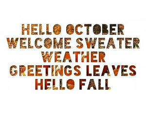 fall, hello, and leaves image