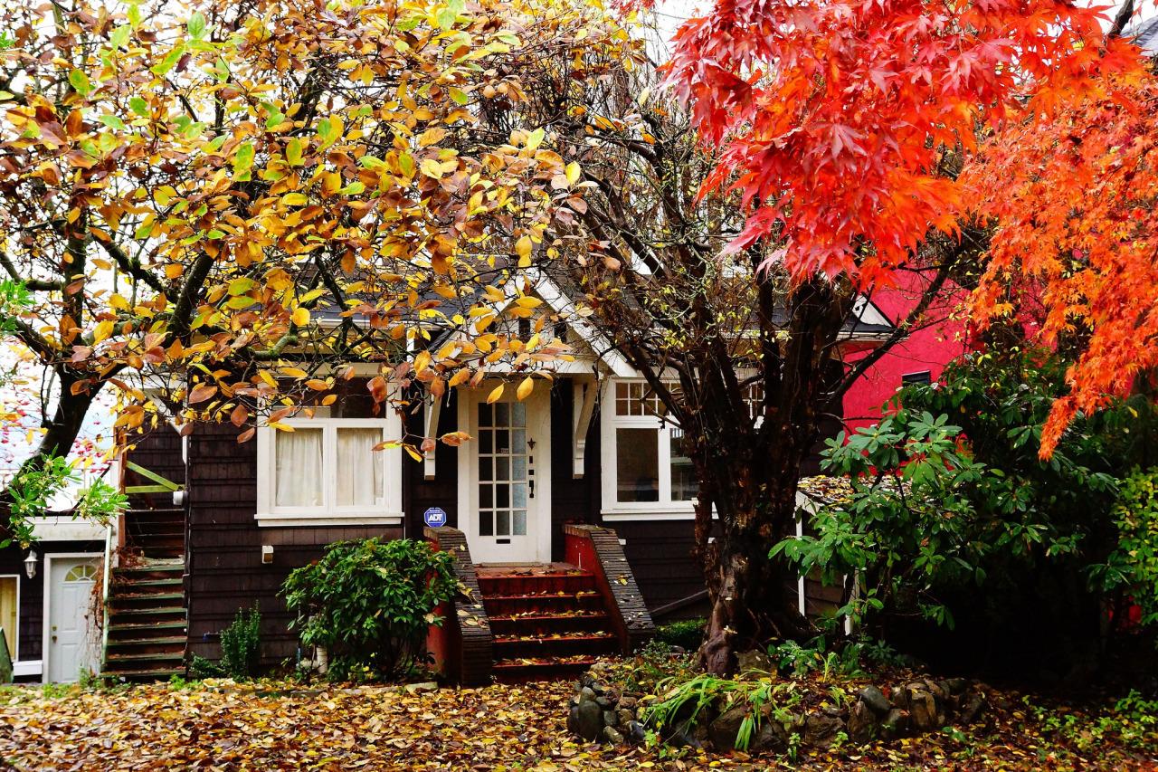 картинки осень на загородном доме мэрия реально