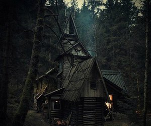 forest, house, and dark image