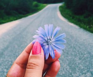 flowers, nails, and nature image