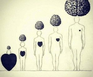 heart, brain, and mind image