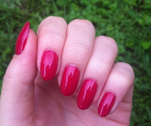 bright, nails, and red image