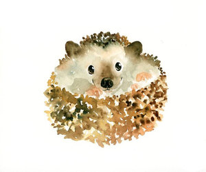 art, hedgehog, and print image