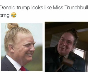 funny, lol, and donald trump image
