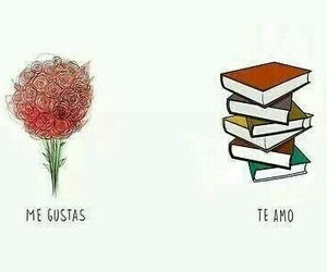 book, love, and flores image