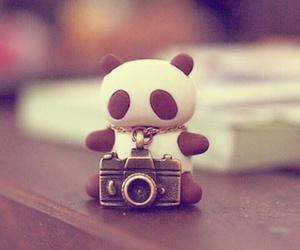panda, cute, and camera image