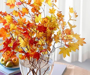 leaves, autumn, and decor image