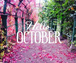 october and pink image