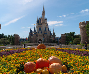 autumn, disneyland, and Halloween image