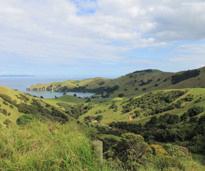 hills, mountains, and new zealand image