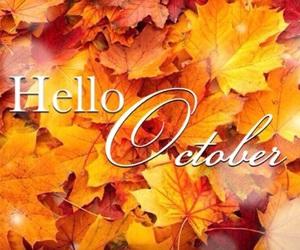 autumn, black, and fall image