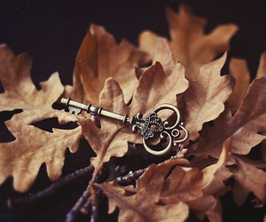 autumn, key, and leaves image