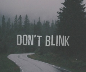 wallpaper, blink, and quote image