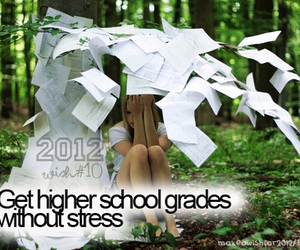 2012, grades, and wish image