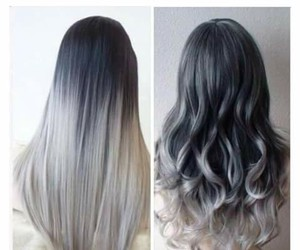 black, curly, and grey image