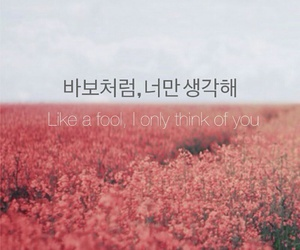 quotes, korean, and love image