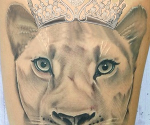 beautiful, lioness, and tattoo image