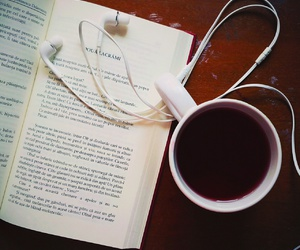 book, cosy, and fall image