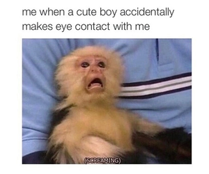 cute boy, funny, and me image