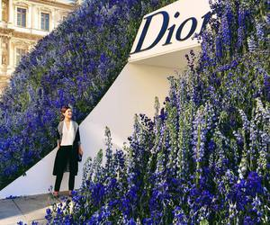 dior, louvre, and entrance image
