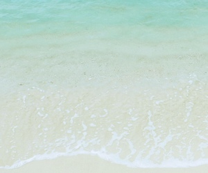 beach, wallpaper, and water image