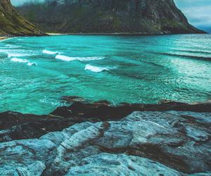 paradise, beach, and ocean image