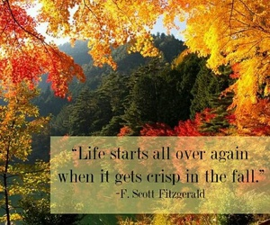 quote, fall, and life image