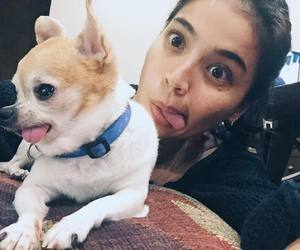 dog, girls, and anne curtis image