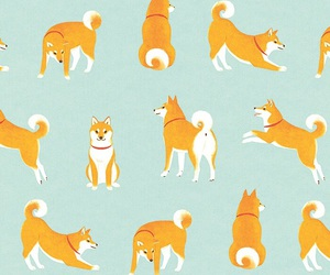 dog, wallpaper, and pattern image