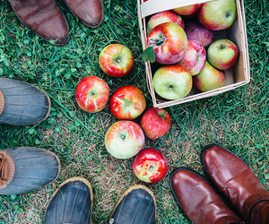 apple and people image