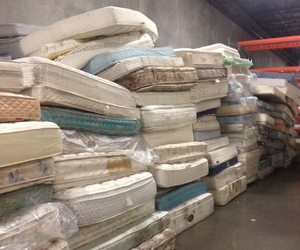 absurd and mattress image