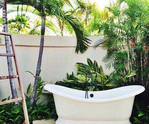 bath, palms, and beautiful image