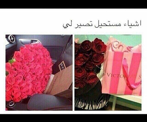 arabic, funny, and gifts image