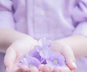 flowers, purple, and pastel image