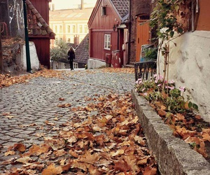 road and autumn fall image