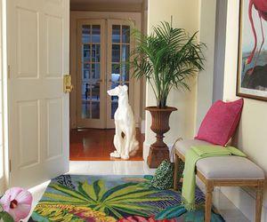 foyer, indoor plants, and interior design image