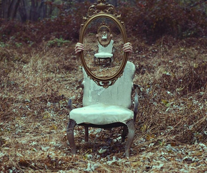 mirror, forest, and photography image