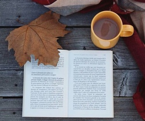 autumn, cold, and book image