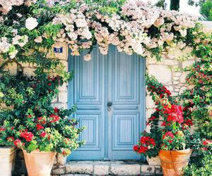 flowers, nature, and door image