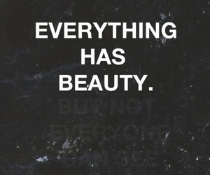 beauty and words image