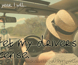 driving, license, and this year i will... image
