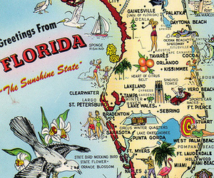 florida, sunshine state, and greetings from image