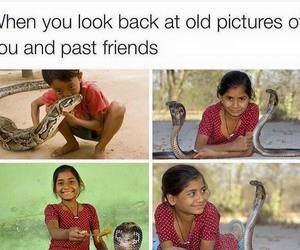 friends, funny, and snake image