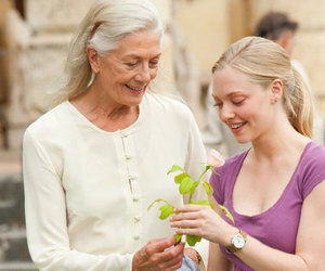 amanda seyfried and letters to juliet image