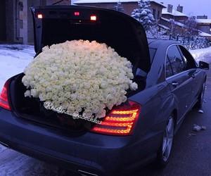 car, fashion, and roses image