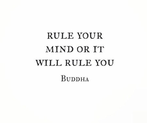 mind and rule image