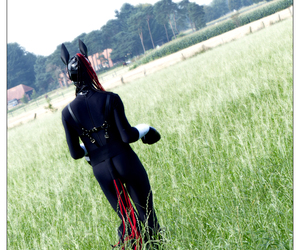 fetish, latex, and ponygirl image