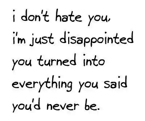 quote, hate, and disappointed image