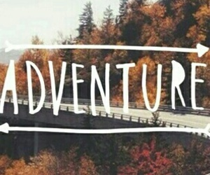 adventure, autumn, and colors image