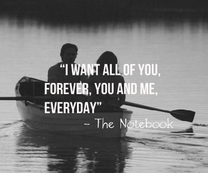 love, quotes, and the notebook image